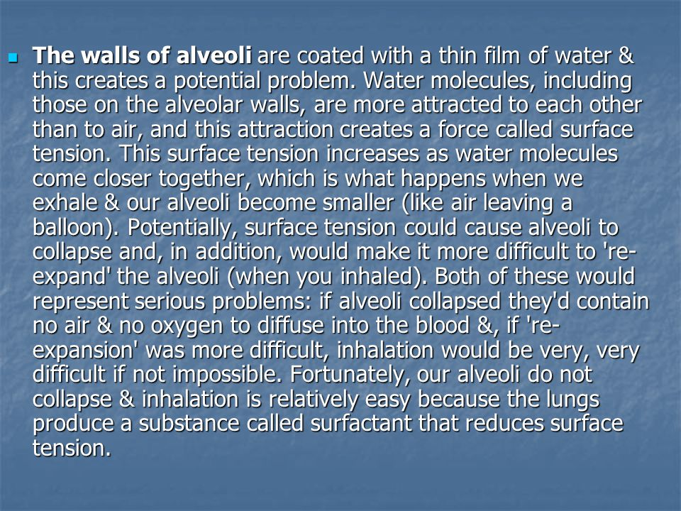 The walls of alveoli are coated with a thin film of water & this creates a potential problem.