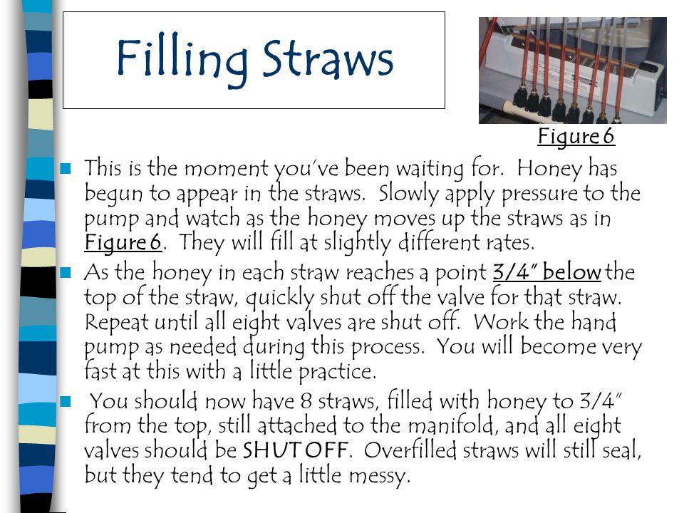 Filling Straws This is the moment you've been waiting for. Honey has begun to appear in the straws. Slowly apply pressure to the pump and watch as the