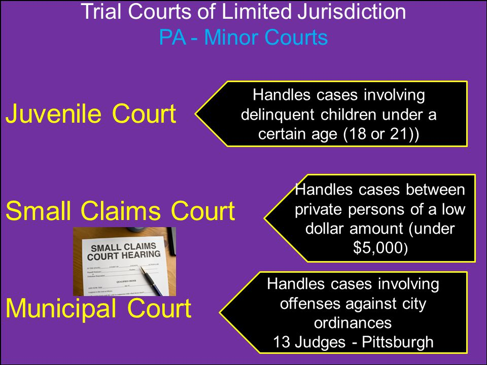 Trial Courts of Limited Jurisdiction PA - Minor Courts Juvenile Court Small Claims Court Municipal Court Handles cases involving delinquent children u