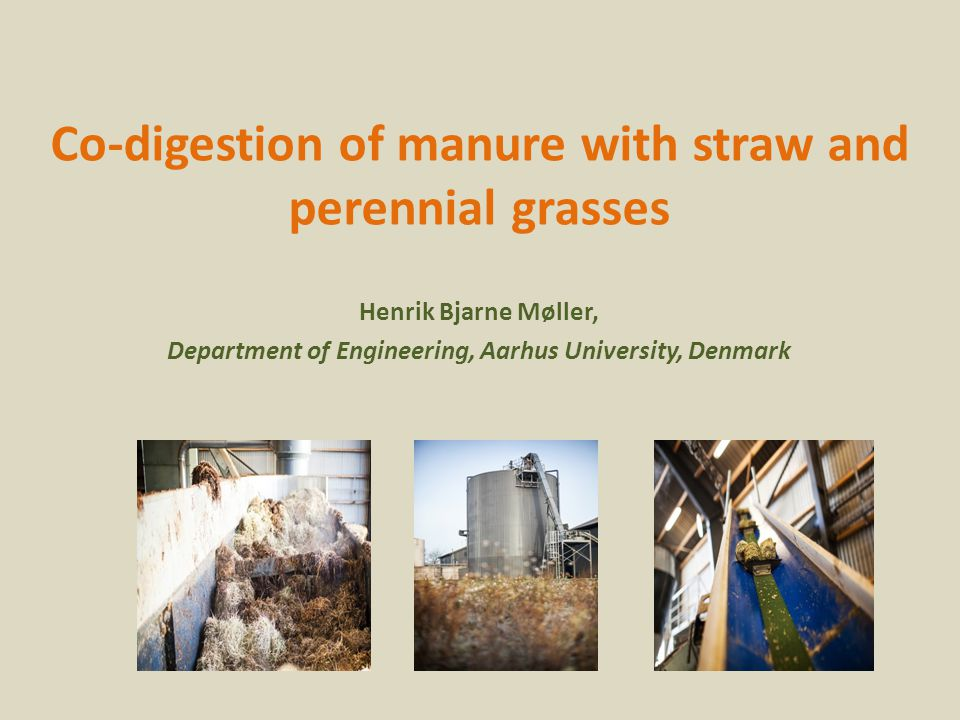 Co-digestion of manure with straw and perennial grasses Henrik Bjarne Møller, Department of Engineering, Aarhus University, Denmark