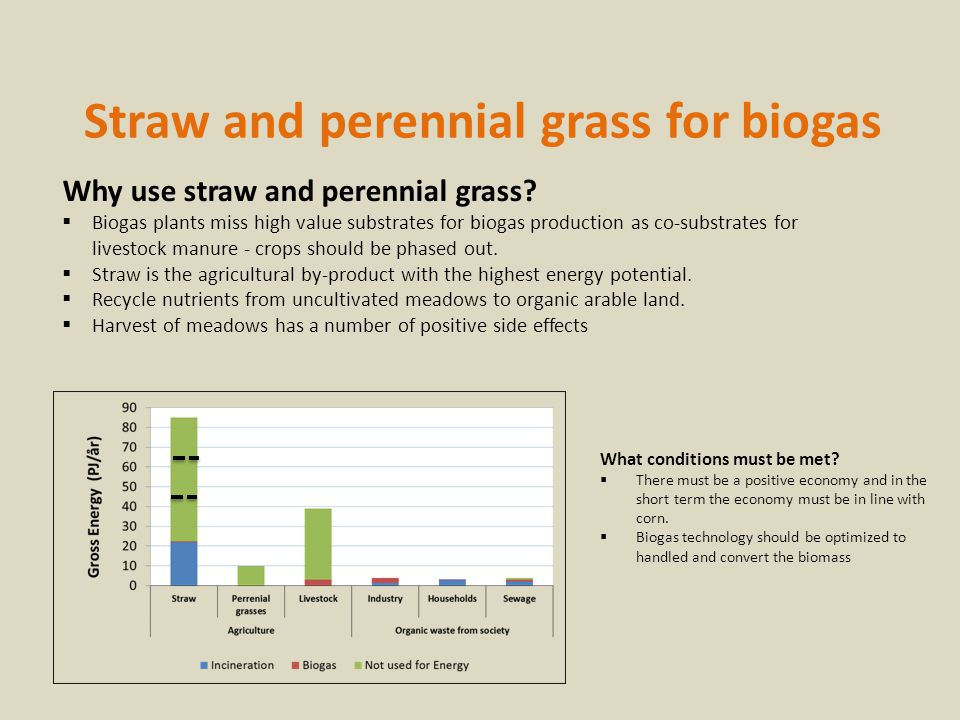Straw and perennial grass for biogas Why use straw and perennial grass.