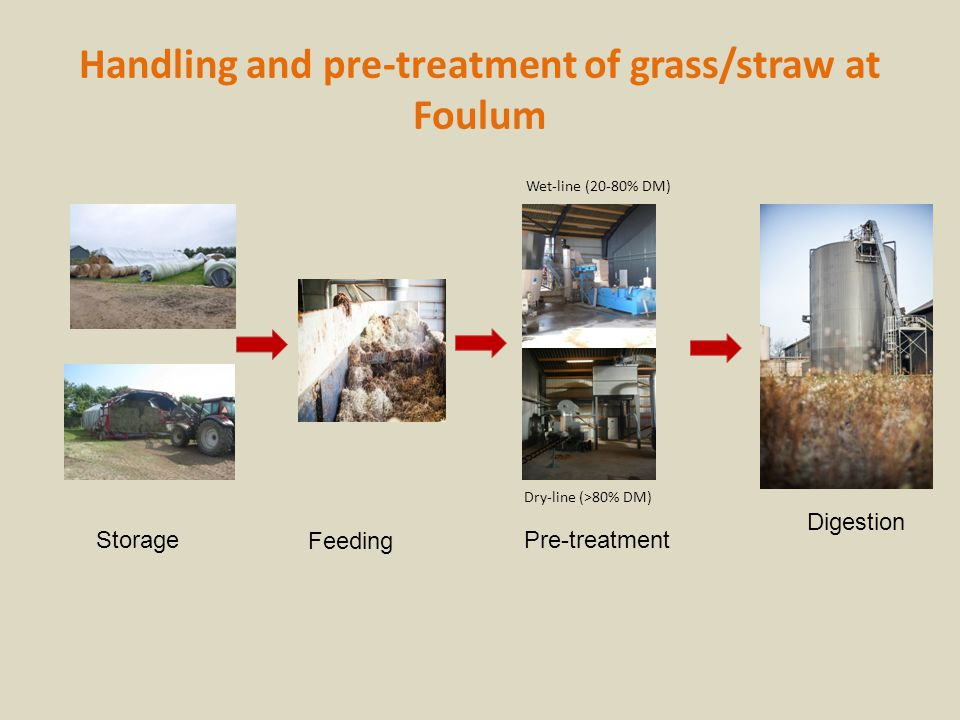 Handling and pre-treatment of grass/straw at Foulum Storage Pre-treatment Digestion Feeding Dry-line (>80% DM) Wet-line (20-80% DM)
