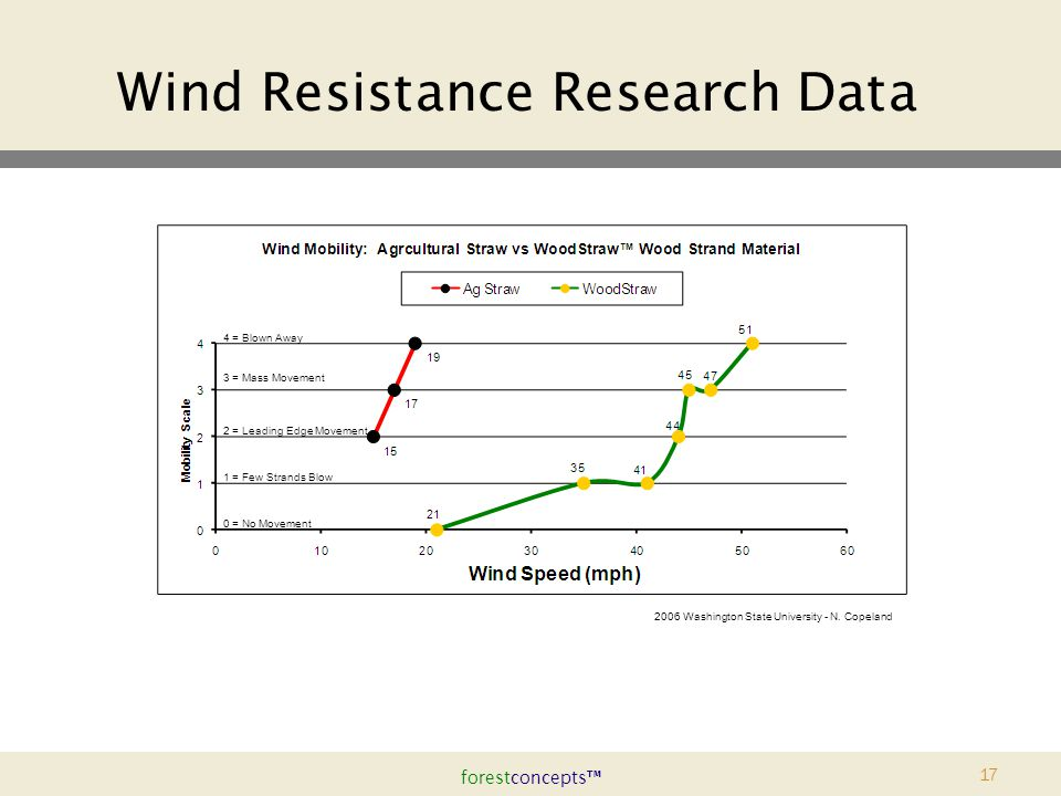 forestconcepts™ 17 Wind Resistance Research Data 4 = Blown Away 3 = Mass Movement 2006 Washington State University - N.