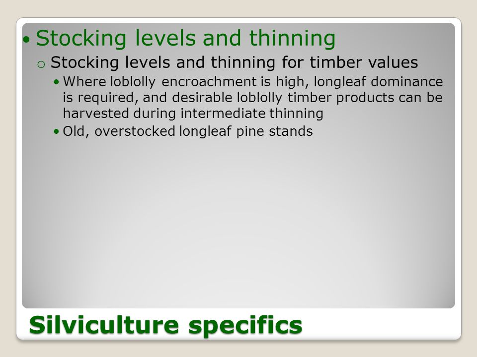 Stocking levels and thinning o Stocking levels and thinning for timber values Where loblolly encroachment is high, longleaf dominance is required, and desirable loblolly timber products can be harvested during intermediate thinning Old, overstocked longleaf pine stands