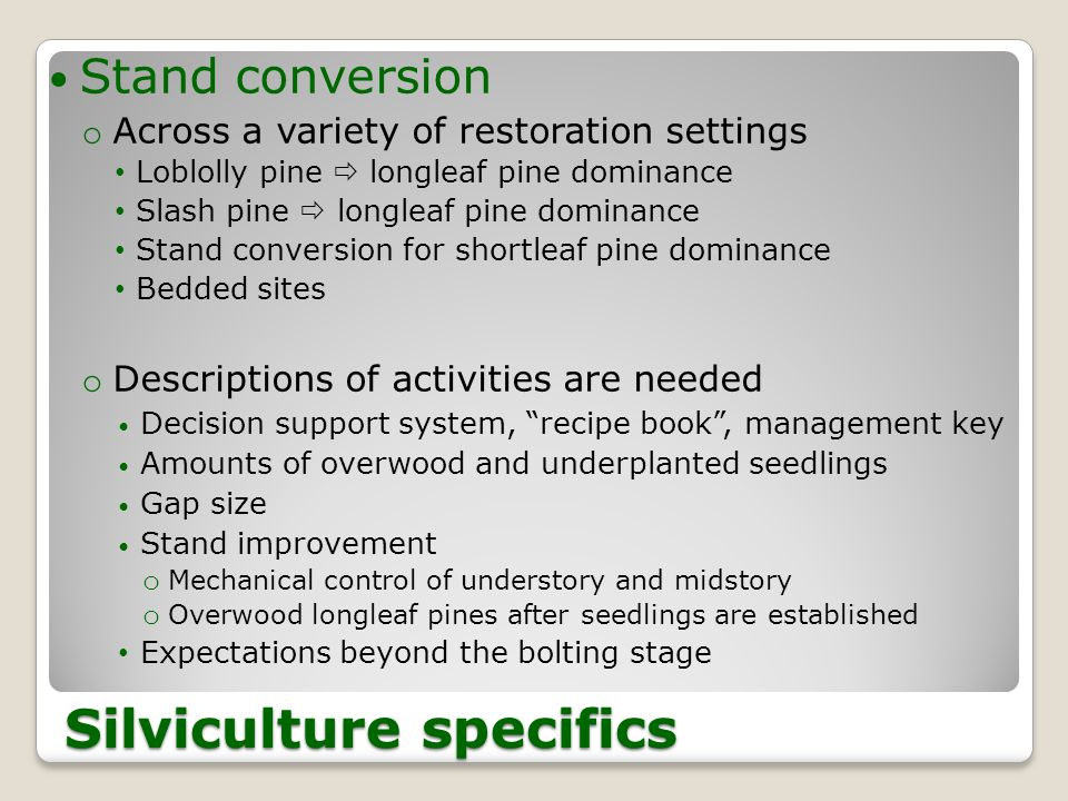 Silviculture specifics Stand conversion o Across a variety of restoration settings Loblolly pine  longleaf pine dominance Slash pine  longleaf pine