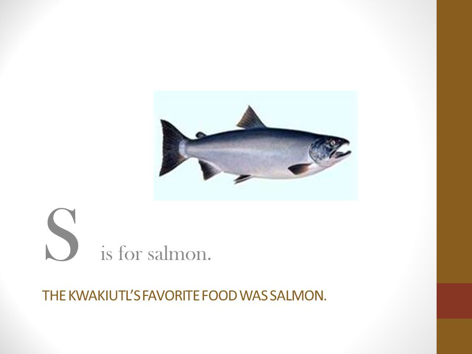 THE KWAKIUTL'S FAVORITE FOOD WAS SALMON. S is for salmon.