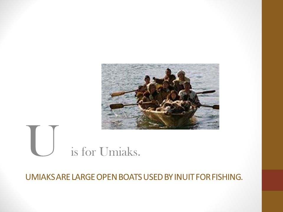 UMIAKS ARE LARGE OPEN BOATS USED BY INUIT FOR FISHING. U is for Umiaks.