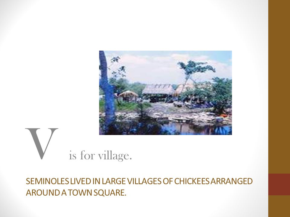 SEMINOLES LIVED IN LARGE VILLAGES OF CHICKEES ARRANGED AROUND A TOWN SQUARE. V is for village.
