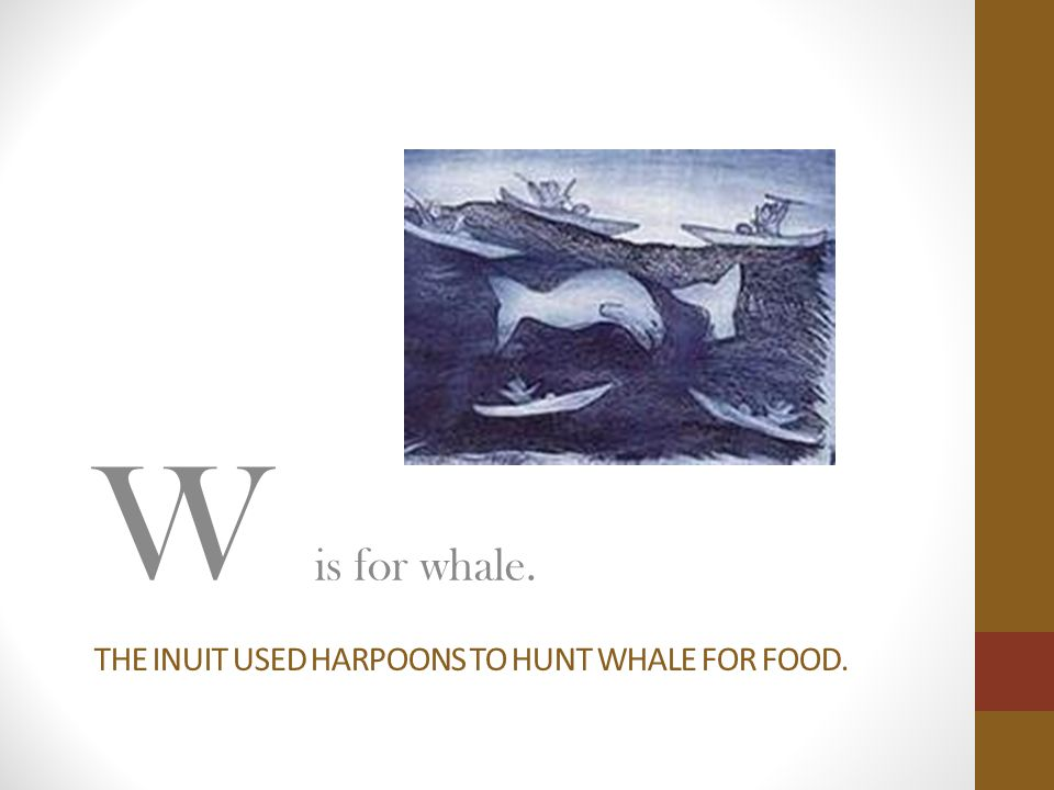 THE INUIT USED HARPOONS TO HUNT WHALE FOR FOOD. W is for whale.