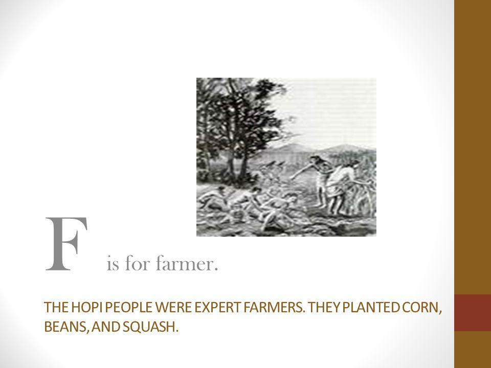 THE HOPI PEOPLE WERE EXPERT FARMERS. THEY PLANTED CORN, BEANS, AND SQUASH. F is for farmer.