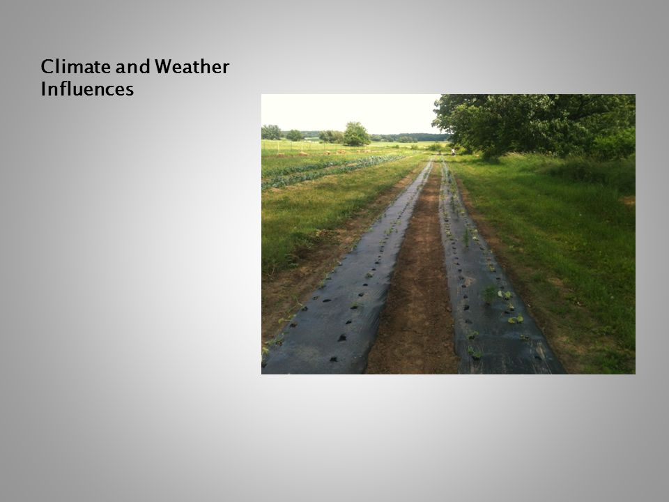 Climate and Weather Influences