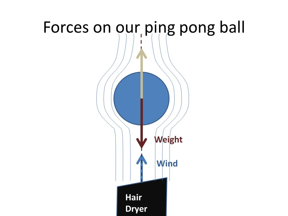 Forces on our ping pong ball Weight Wind Hair Dryer