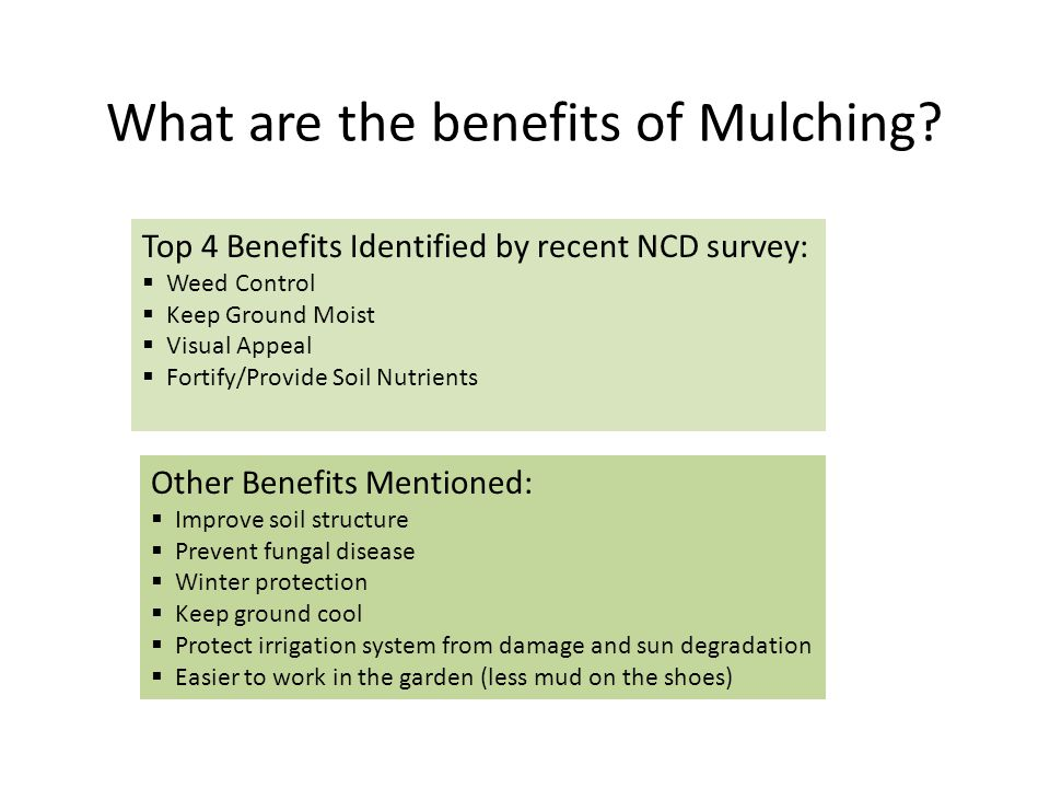 Resources to Find Mulch The #1 Source: Local Rose Society!!!!!!.