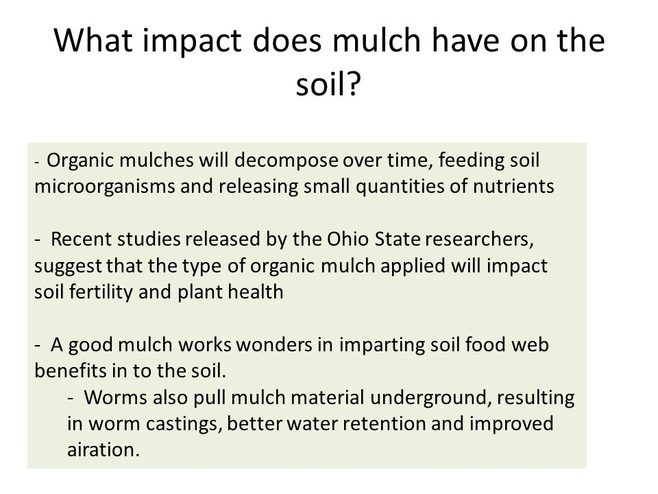 Summary Comments - People use a variety of mulches to meet their needs - The type of mulch used can impact the soil composition and nutrition - When applying mulch in your garden this year, consider the benefits to your soil, which ultimately impact the health of your plants - Different mulches will encourage more fungi or bacteria.