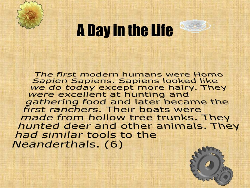 Conclusion Modern Humans were very like we are today.