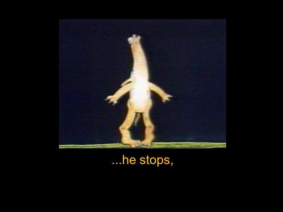 ...he stops,