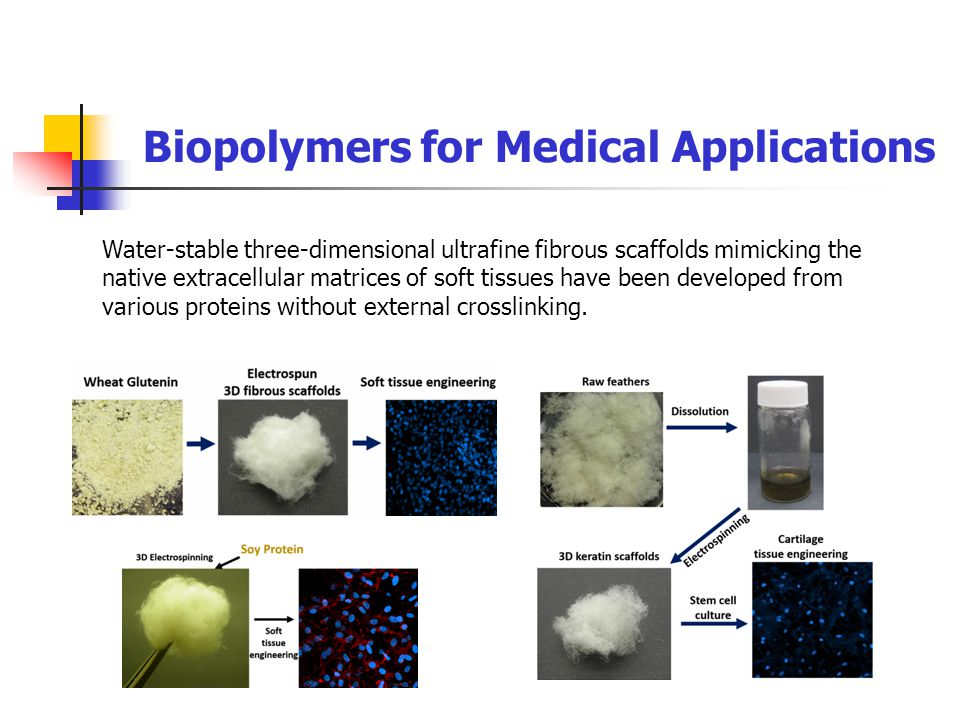 Biopolymers for Medical Applications Water-stable three-dimensional ultrafine fibrous scaffolds mimicking the native extracellular matrices of soft tissues have been developed from various proteins without external crosslinking.