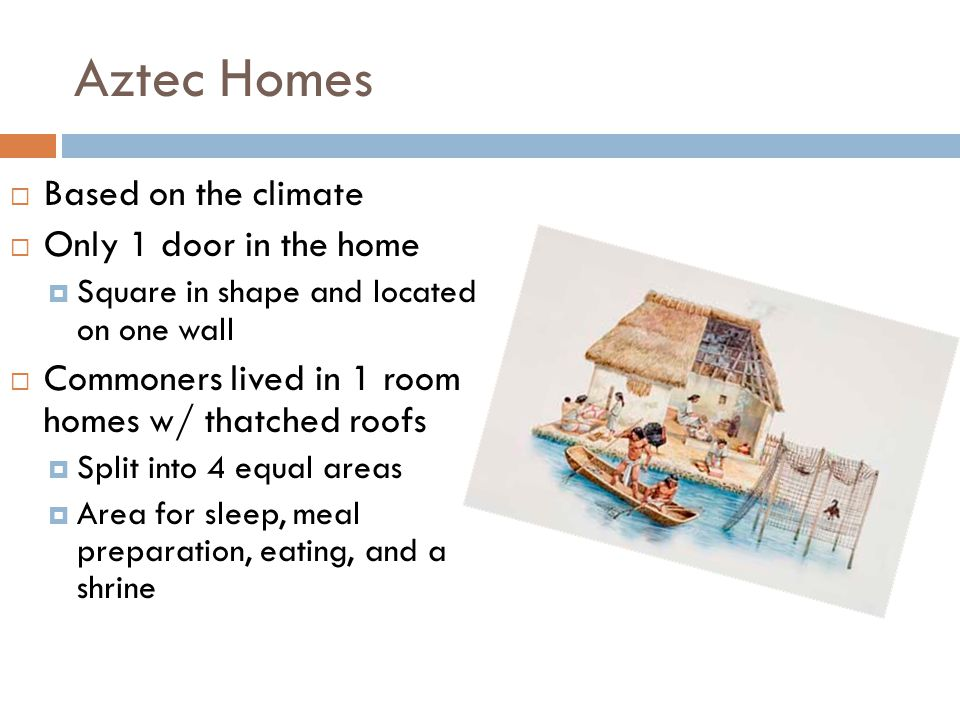 Aztec Homes  Based on the climate  Only 1 door in the home  Square in shape and located on one wall  Commoners lived in 1 room homes w/ thatched roofs  Split into 4 equal areas  Area for sleep, meal preparation, eating, and a shrine