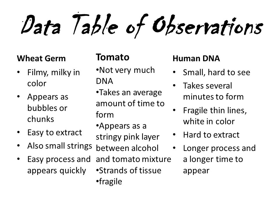 Data Table of Observations Wheat Germ Filmy, milky in color Appears as bubbles or chunks Easy to extract Also small strings Easy process and appears q