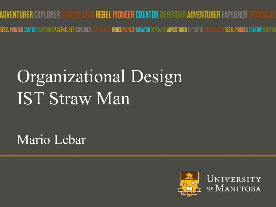 15 Organizational Design IST Straw Man Mario Lebar