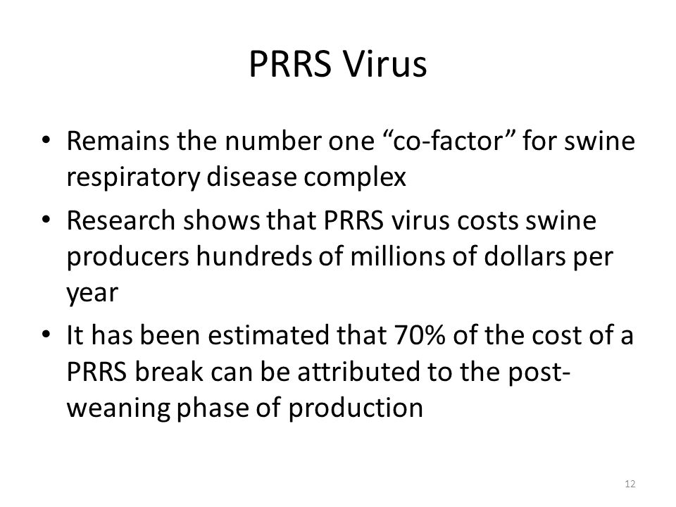 "PRRS Virus Remains the number one ""co-factor"" for swine respiratory disease complex Research shows that PRRS virus costs swine producers hundreds of m"