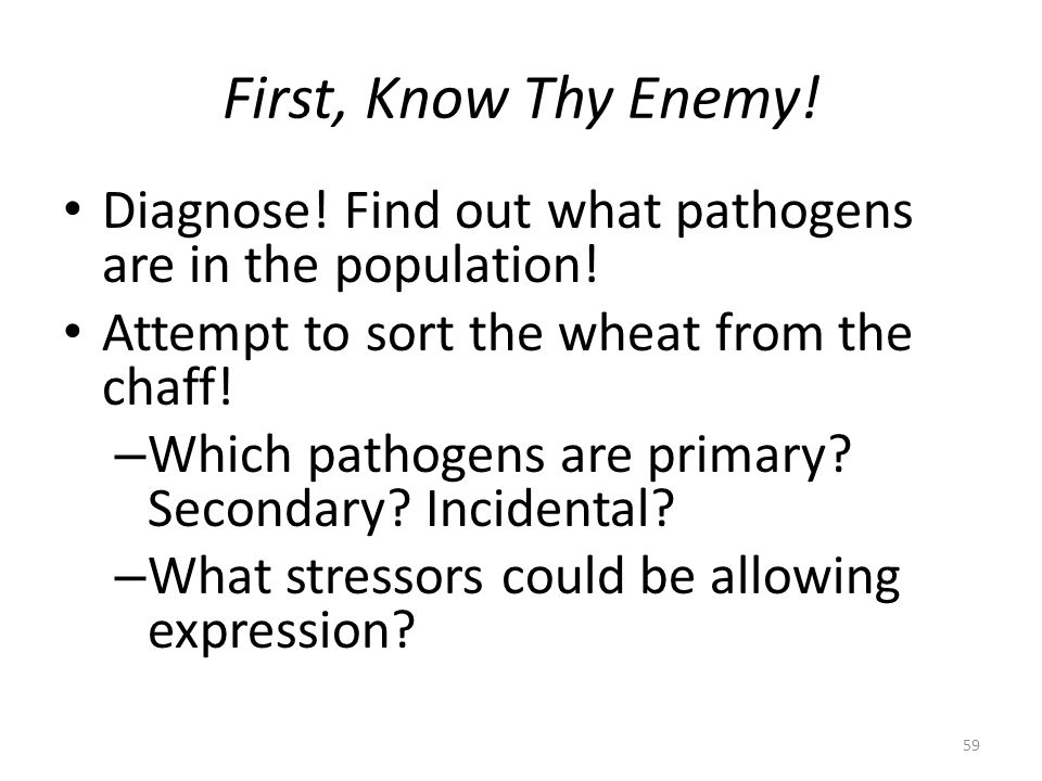 First, Know Thy Enemy! Diagnose! Find out what pathogens are in the population! Attempt to sort the wheat from the chaff! – Which pathogens are primar