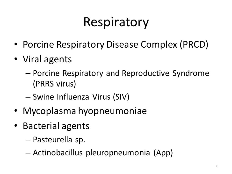 Porcine Respiratory Disease Complex (PRDC) Just as the name implies…respiratory problems in growing pigs are nearly always a result of multiple bugs and insults A mixed infection Outside of the lab, rarely is respiratory disease the result of a single pathogen.