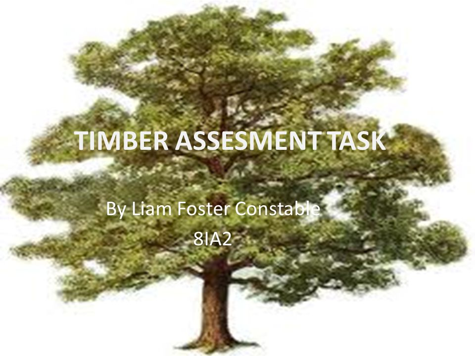 TIMBER ASSESMENT TASK By Liam Foster Constable 8IA2