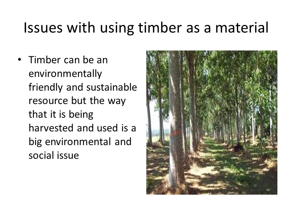 Issues with using timber as a material Timber can be an environmentally friendly and sustainable resource but the way that it is being harvested and used is a big environmental and social issue