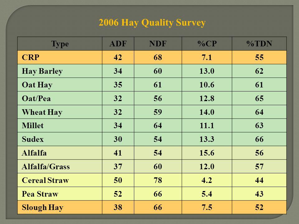 2006 Hay Quality Survey TypeADFNDF%CP%TDN CRP42687.155 Hay Barley346013.062 Oat Hay356110.661 Oat/Pea325612.865 Wheat Hay325914.064 Millet346411.163 S