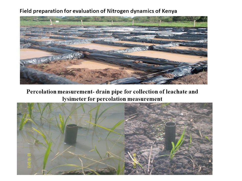 Field preparation for evaluation of Nitrogen dynamics of Kenya Percolation measurement- drain pipe for collection of leachate and lysimeter for percolation measurement