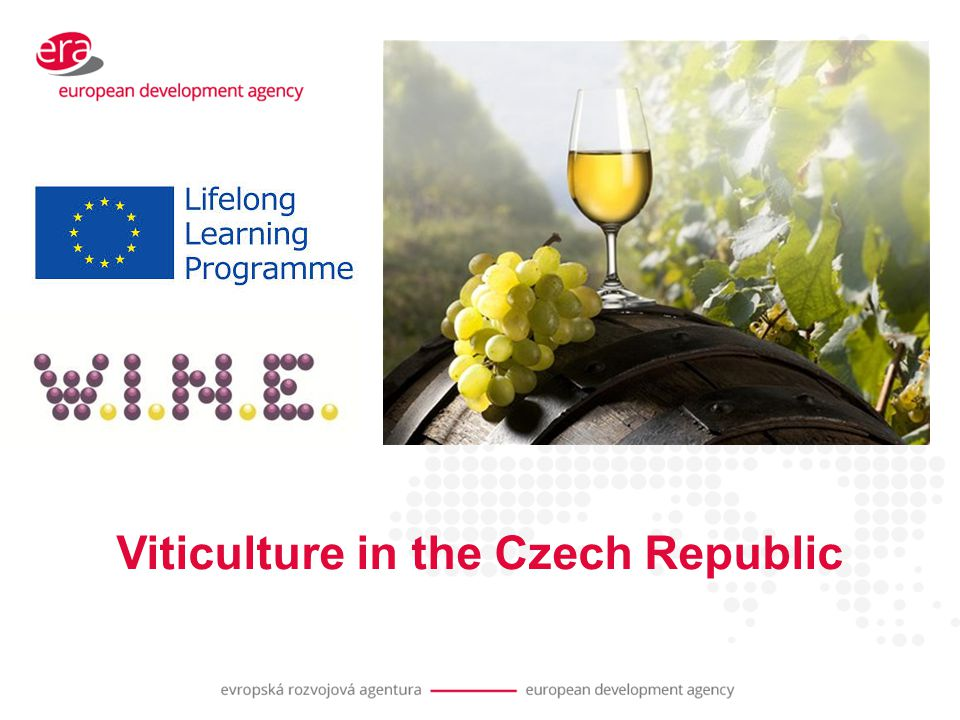 Viticulture in the Czech Republic