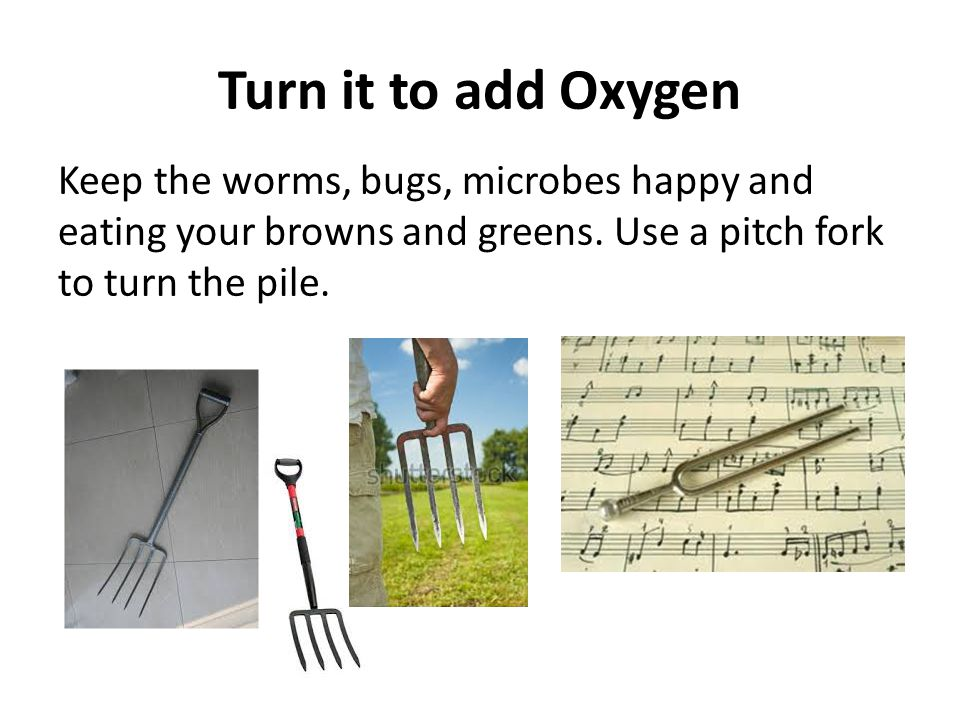 Turn it to add Oxygen Keep the worms, bugs, microbes happy and eating your browns and greens.