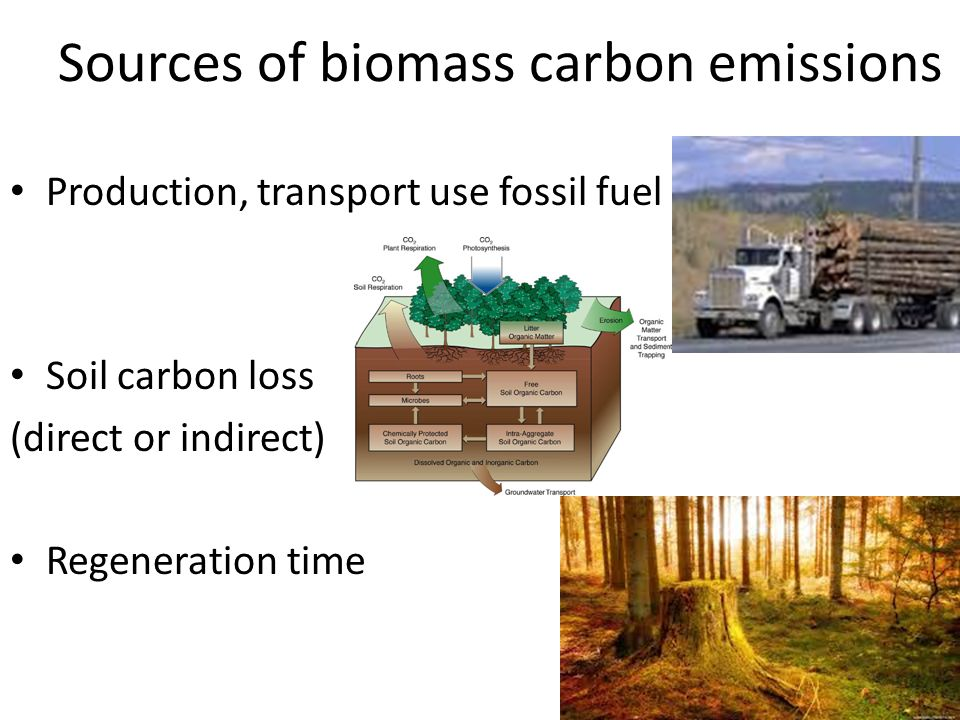 Sources of biomass carbon emissions Production, transport use fossil fuel Soil carbon loss (direct or indirect) Regeneration time