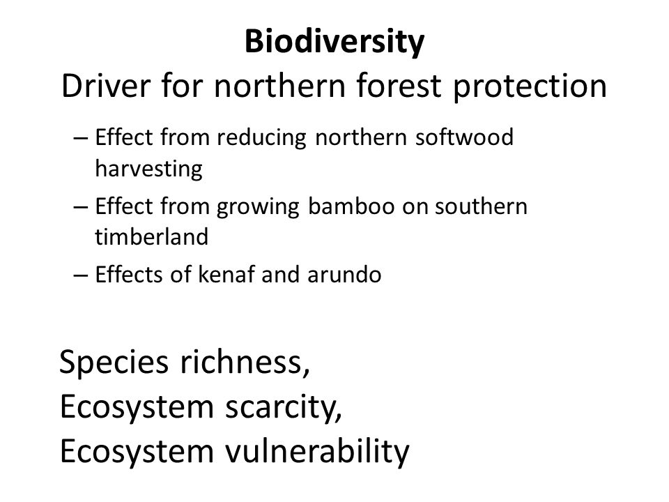 Biodiversity Driver for northern forest protection – Effect from reducing northern softwood harvesting – Effect from growing bamboo on southern timberland – Effects of kenaf and arundo Species richness, Ecosystem scarcity, Ecosystem vulnerability