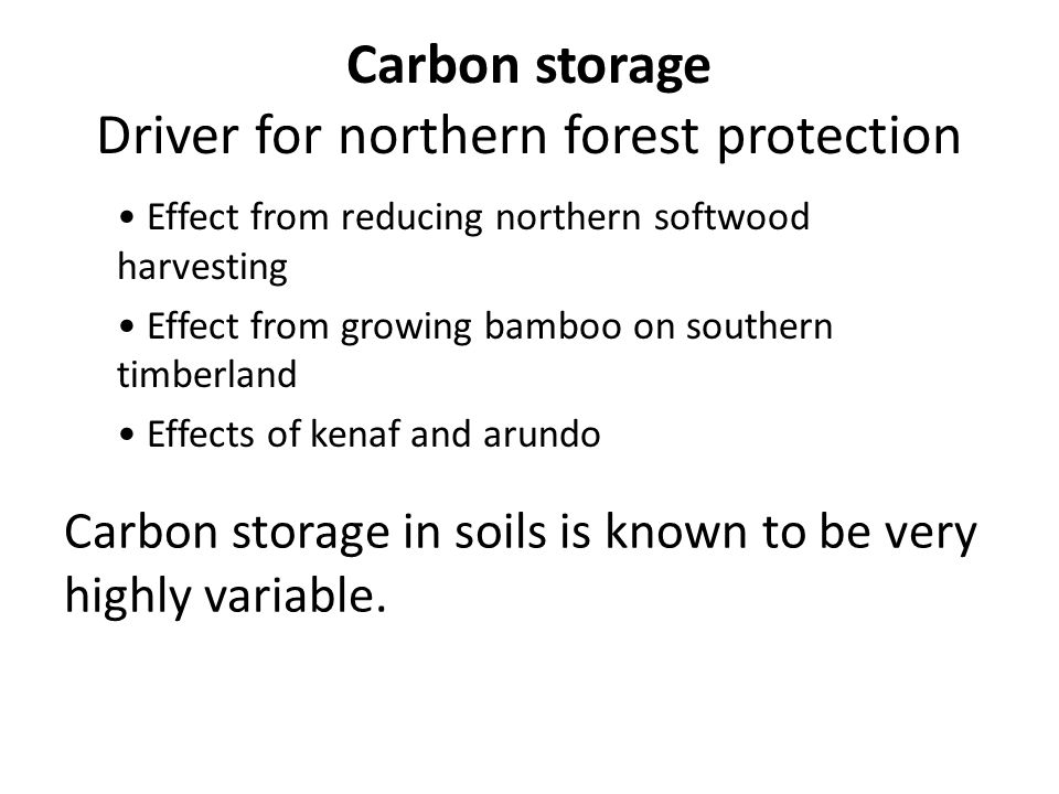 Carbon storage Driver for northern forest protection Effect from reducing northern softwood harvesting Effect from growing bamboo on southern timberland Effects of kenaf and arundo Carbon storage in soils is known to be very highly variable.