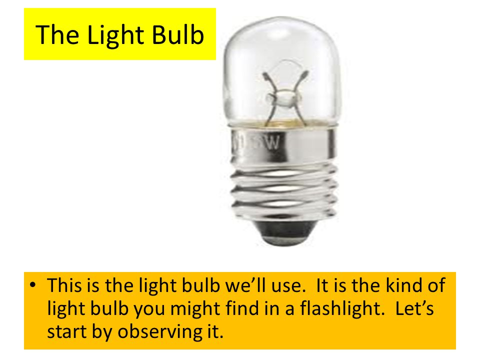 This is the light bulb we'll use. It is the kind of light bulb you might find in a flashlight. Let's start by observing it. The Light Bulb