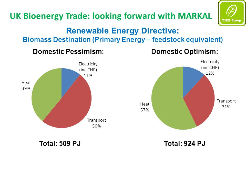 UK Bioenergy Trade: looking forward with MARKAL Renewable Energy Directive: Biomass Destination (Primary Energy – feedstock equivalent) Domestic Pessimism:Domestic Optimism: Total: 509 PJTotal: 924 PJ