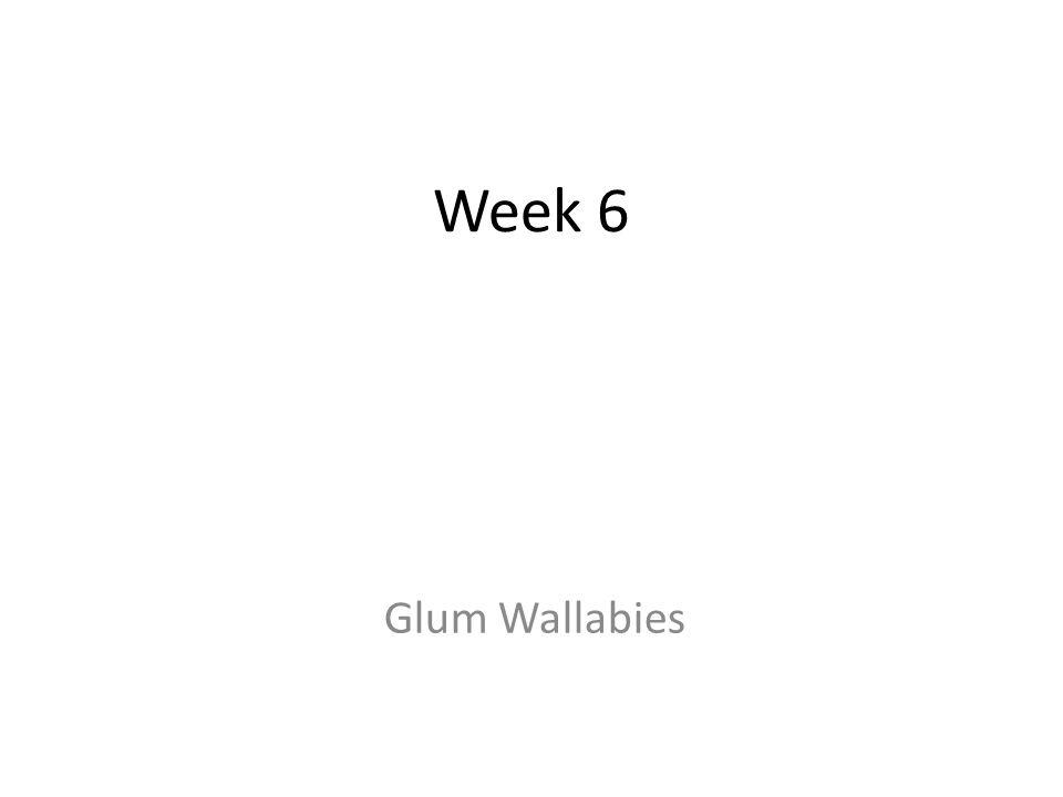 Week 6 Glum Wallabies