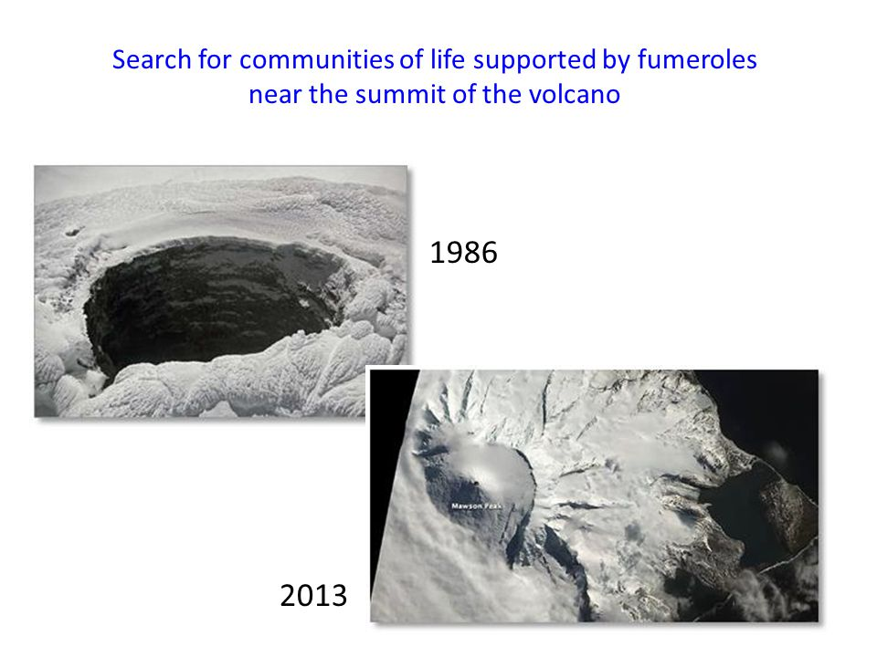 1986 2013 Search for communities of life supported by fumeroles near the summit of the volcano