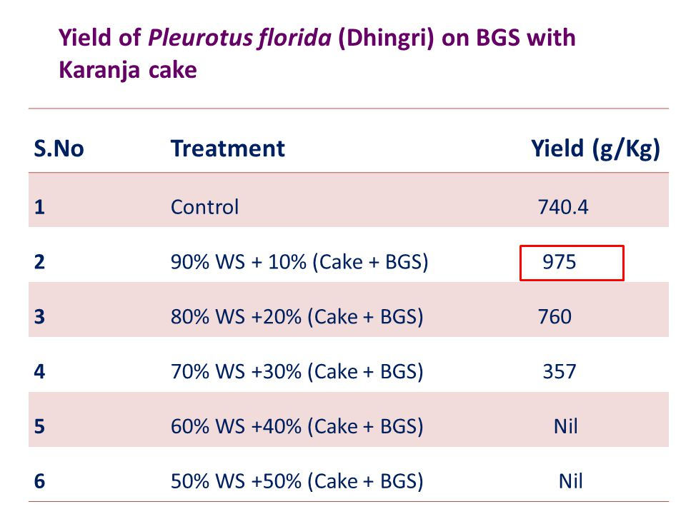 S.NoTreatment Yield (g/Kg) 1Control 740.4 290% WS + 10% (Cake + BGS) 975 380% WS +20% (Cake + BGS) 760 470% WS +30% (Cake + BGS) 357 560% WS +40% (Cak