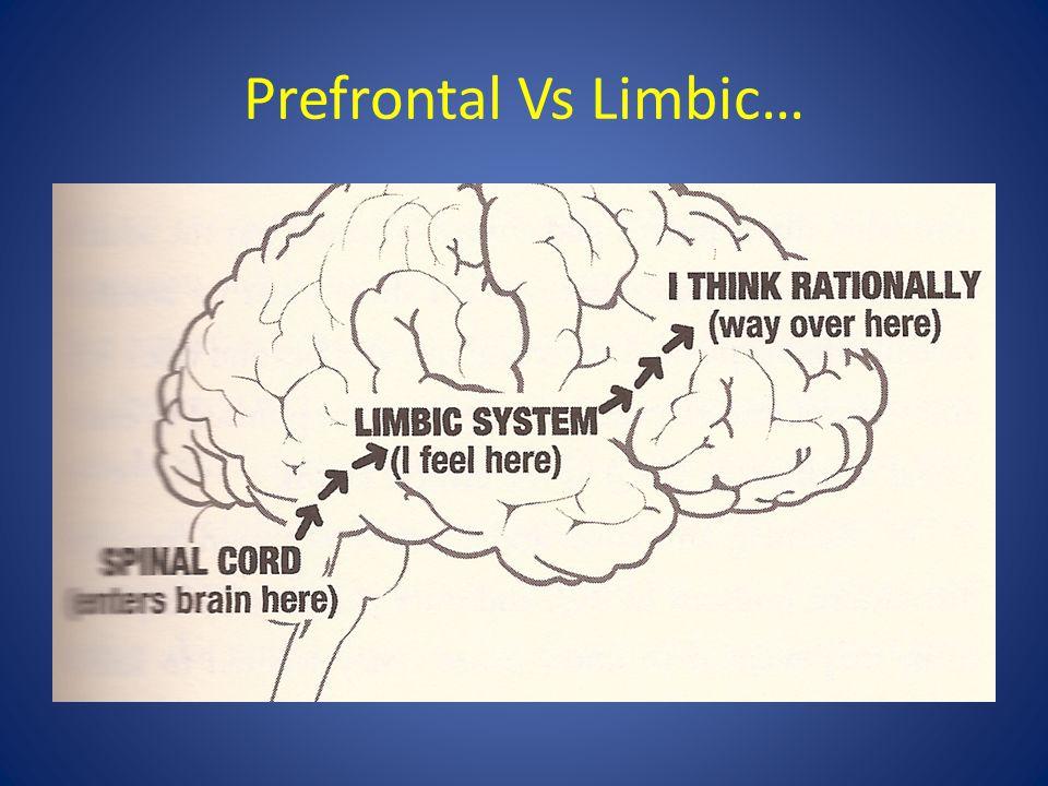 Prefrontal Vs Limbic…