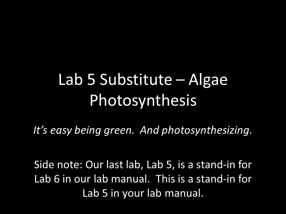 Lab 5 Substitute – Algae Photosynthesis It's easy being green. And photosynthesizing. Side note: Our last lab, Lab 5, is a stand-in for Lab 6 in our l