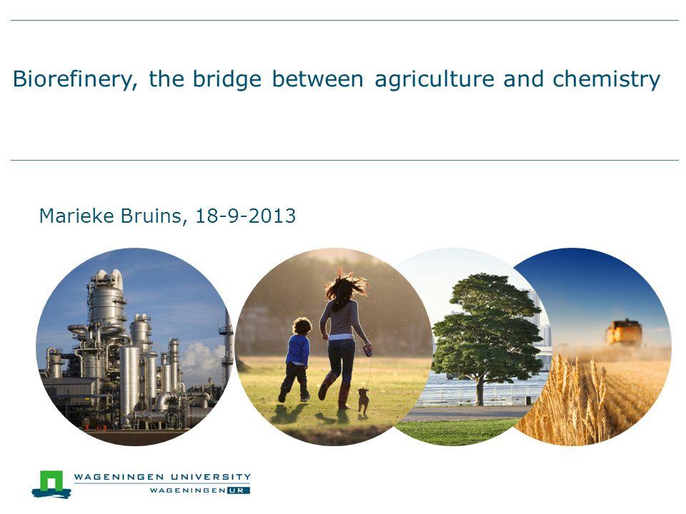 Biorefinery, the bridge between agriculture and chemistry Marieke Bruins, 18-9-2013