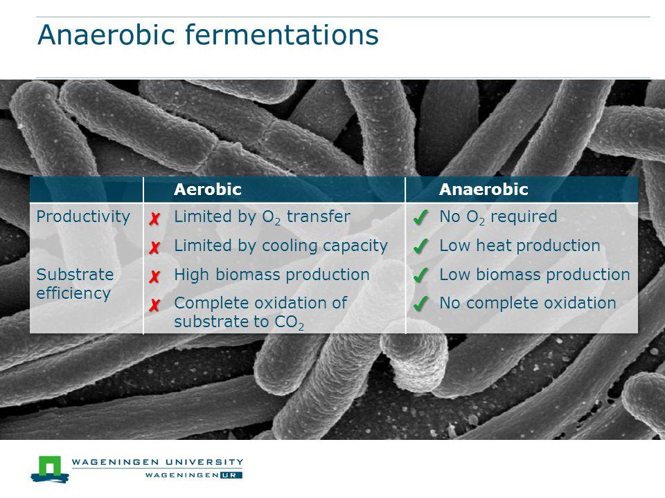 Anaerobic fermentations