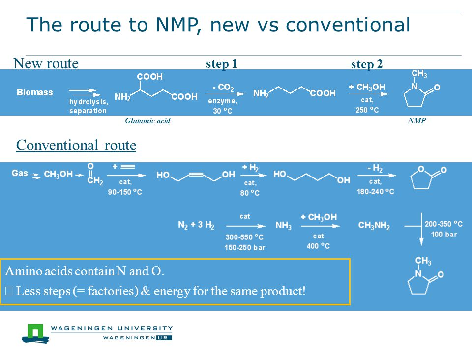 The route to NMP, new vs conventional New route Conventional route Glutamic acidNMP Amino acids contain N and O.
