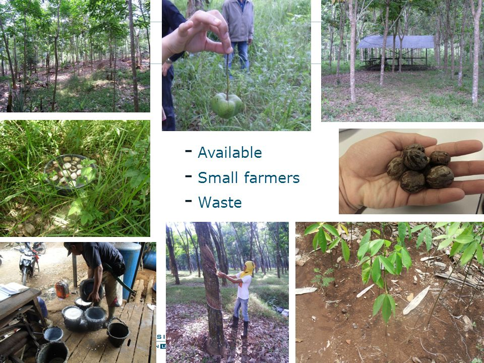 - Available - Small farmers - Waste