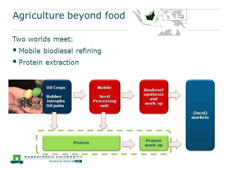 Agriculture beyond food Two worlds meet:  Mobile biodiesel refining  Protein extraction Oil Crops Rubber Jatropha Oil palm Oil Crops Rubber Jatropha Oil palm Mobile Seed Processing unit Mobile Seed Processing unit Biodiesel synthesis and work-up Protein Protein work-up (local) markets