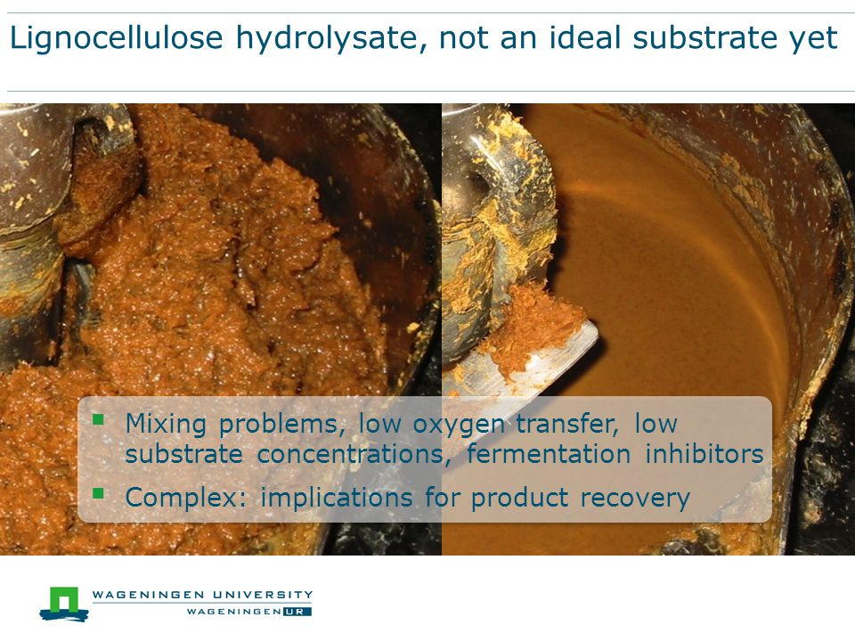 Lignocellulose hydrolysate, not an ideal substrate yet  Mixing problems, low oxygen transfer, low substrate concentrations, fermentation inhibitors  Complex: implications for product recovery