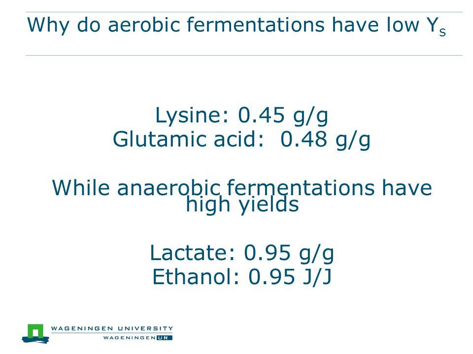 Why do aerobic fermentations have low Y s Lysine: 0.45 g/g Glutamic acid: 0.48 g/g While anaerobic fermentations have high yields Lactate: 0.95 g/g Ethanol: 0.95 J/J